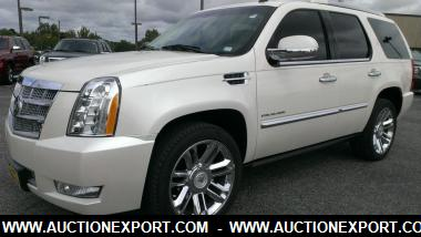 2010 cadillac escalade platinum suv 4 doors car for sale. Black Bedroom Furniture Sets. Home Design Ideas